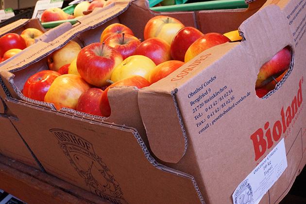 seltene apfelsorten kaufen
